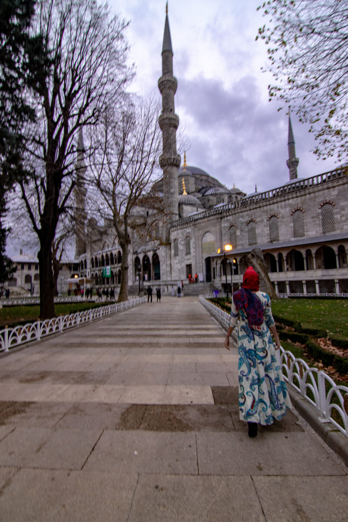 Turkey – Historic Istanbul in a Day – The Maiden Voyager